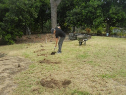 The start: digging holes..