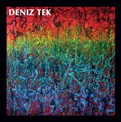 DenizTek-MeanOldTwister-LP-300dpi.jpg