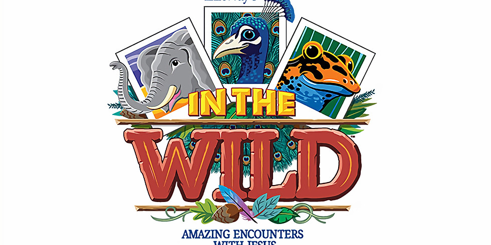 VBS: In The Wild