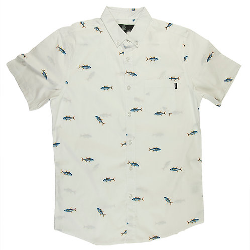 Fishes white pattern