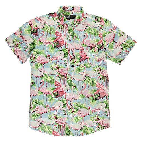 Flamingos among trees