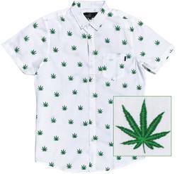 Cannabis white