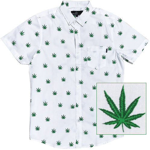 Cannabis (White)