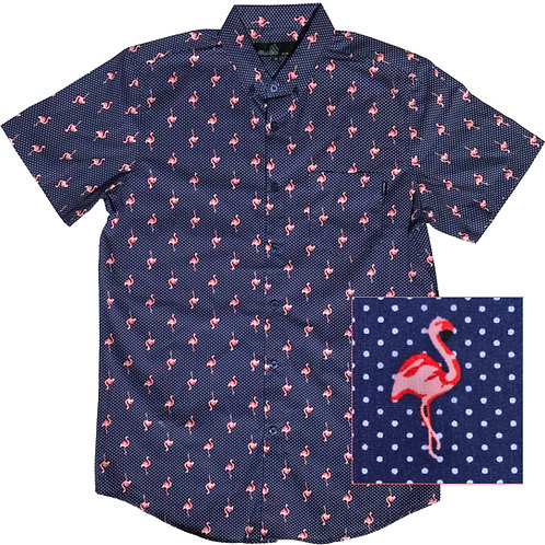 Dotted Flamingo