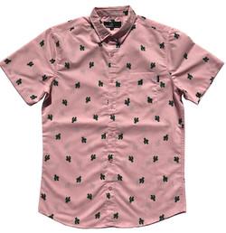 Pink Cactus