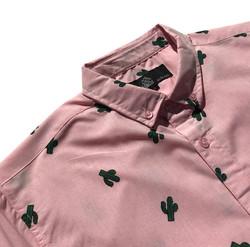 Pink Cactus close up