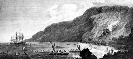 Upon discovering Hawaii, James Cook was greeted by Hawaiians on their surfboards