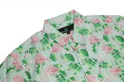 Flamingo palms 1 close up