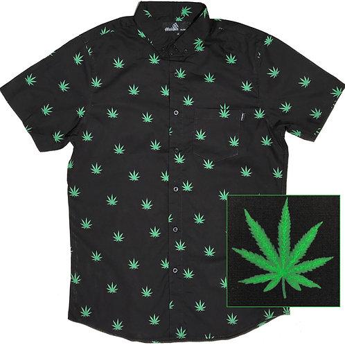 Cannabis (Black)