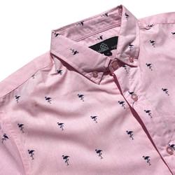 Flamingo Pink Pattern Close Up