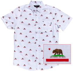 California Flag 1
