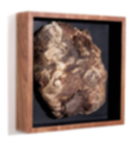 Things-Pine-Burl-Angle.jpg