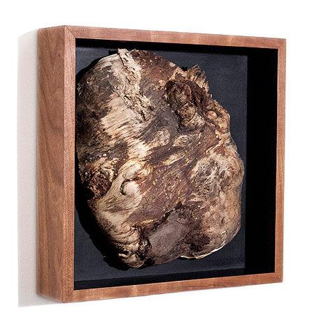 Things-Pine-Burl-Angle.jpg
