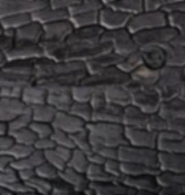 Charred-detail.jpg