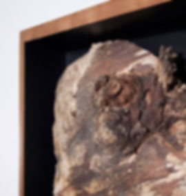 Things-Pine-Burl-Detail.jpg