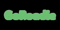 GoRoadie logo