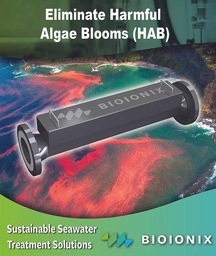EliminateAgaeBloom_Bioionix.jpg