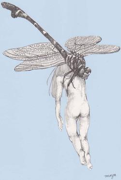 Bugslife.dragonfly