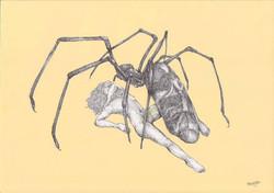 bugslife.spider