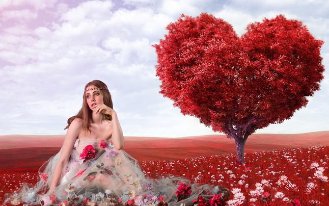 artistic-blossom-bright-207962.jpg