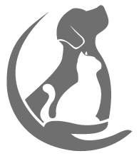 Logo_Allein.png