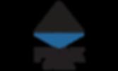Peak CPA logo