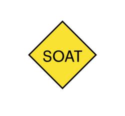Paga el SOAT