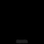 Wayfarer Film Co. logo Videographer Jacksonville Florida