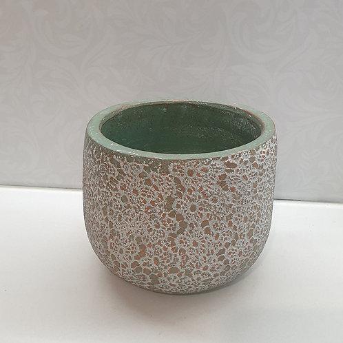 Green Pot / White Lace