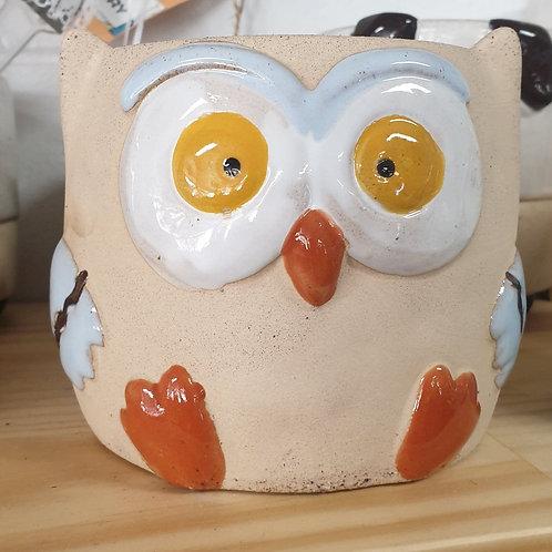 Owl Colourful