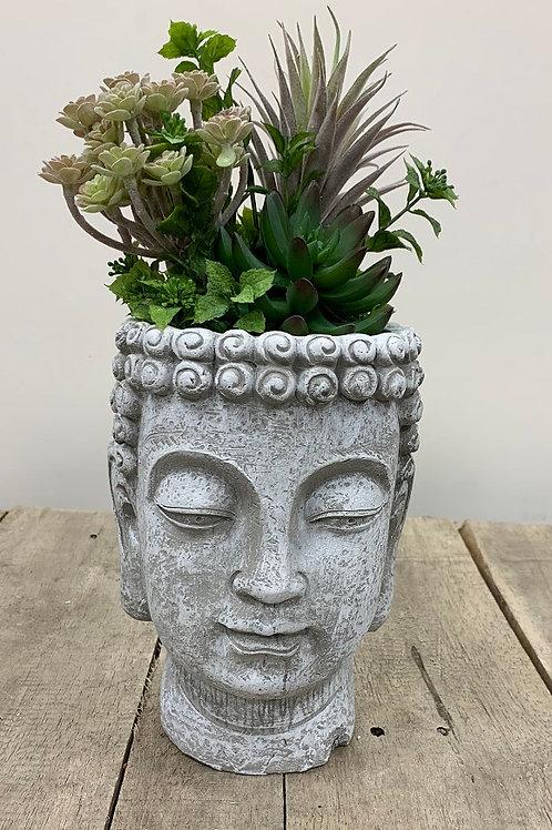 Buddha Face Planter