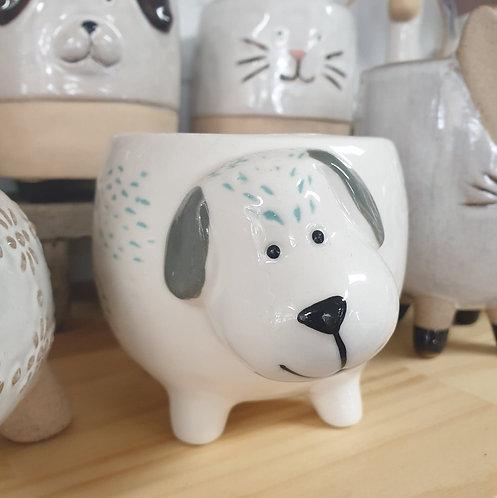 Dog White Aqua flecks