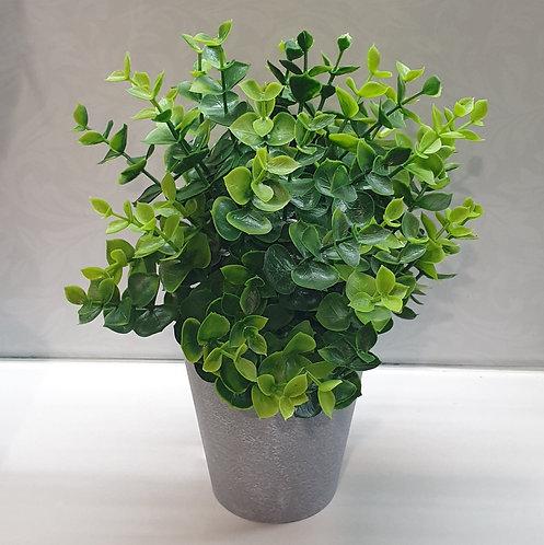 Artificial Buxus pot