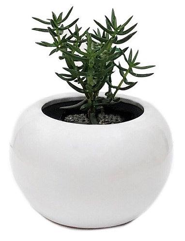 Round Ball Pots