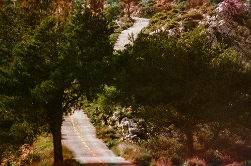 La vie qui file - Parc naturel de la Serra de Mariola #3