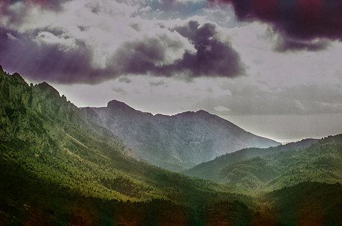 La vie qui file - Parc naturel de la Serra de Mariola #4