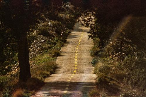 La vie qui file - Parc naturel de la Serra de Mariola #2