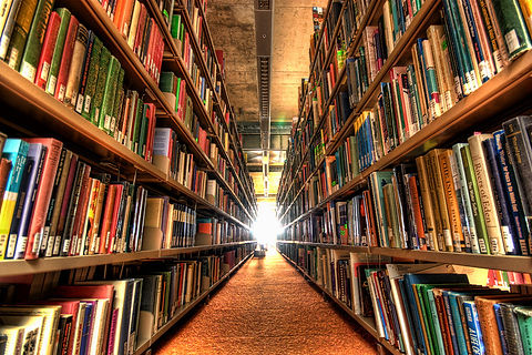 library-100616524-large.jpg