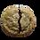 Thumbnail: LARGE FAN FAVORITES COOKIE BOX (24  COOKIES)