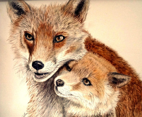 FOX AND CUB