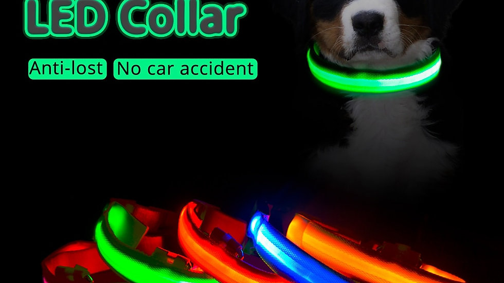 USB Charging Led Dog Collar AntiLost/Avoid Car Accident Collar for Dogs Puppies