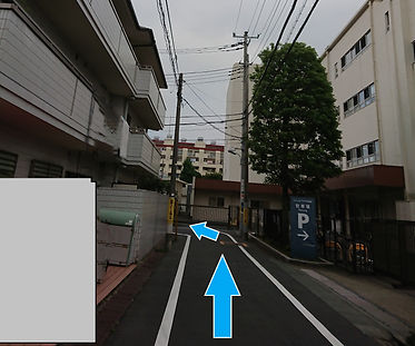 Map11b_edited.jpg