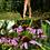 Thumbnail: Secret Photoset #02 - Garden of Axys (Digital PDF)