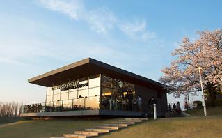 ซากุระทริป 2014 - ร้าน Starbucks แห่ง Toyama