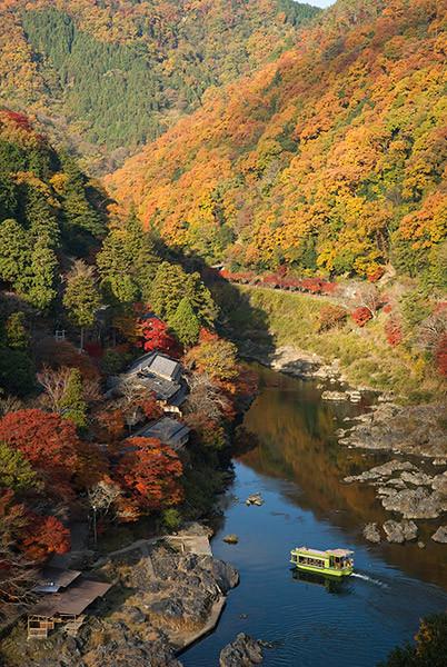 Arashiyama-pantip2.jpg