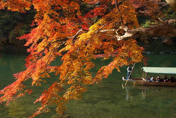 Arashiyama-Pantip.jpg