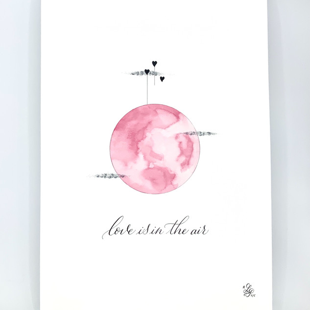 Affiche Love is in the air Rose amour.jp