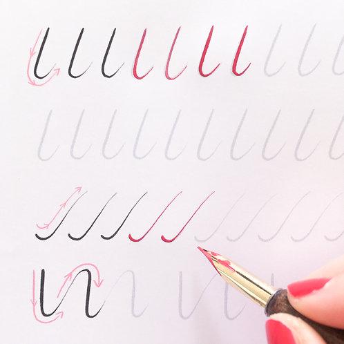 Guide d'initiation à la calligraphie à la plume