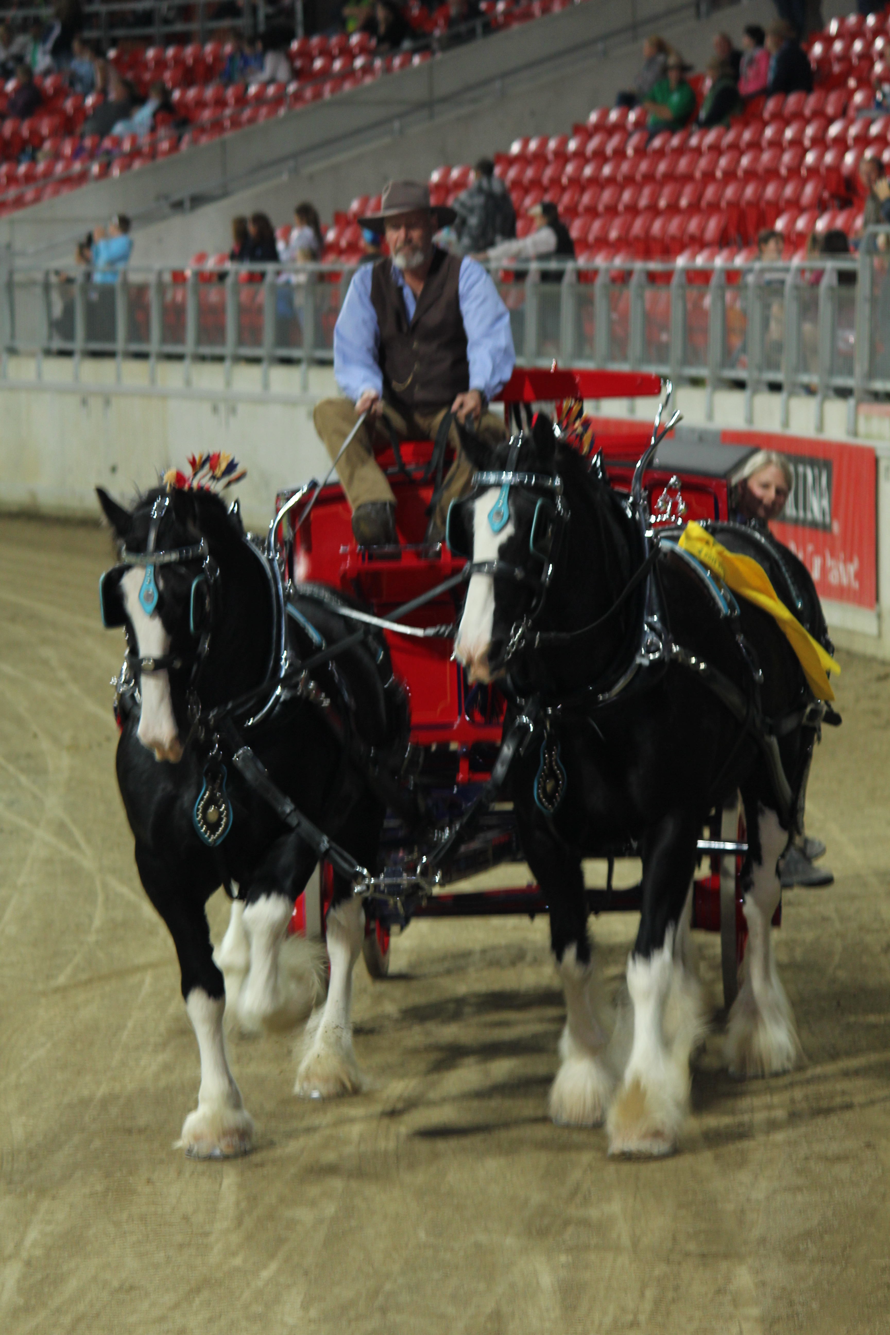 flash & Ent at the 2014 easter show
