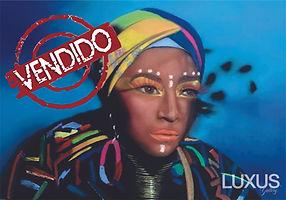 Luxus Gallery - Ana Bittar - Vendido.jpg